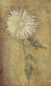 Mondrian A109 Upright Chrysanthemum against a Brownish Ground, 1900