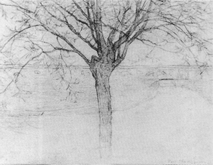 Mondrian A213 Irrigation Ditch with Young Pollarded Willow, drawing I, 1900