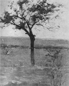 Mondrian A228 Polder Landscape with Silhouetted Young Tree, 1900-01