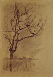 Mondrian A57 Tree Sketch for St. Jacob's Church, Winter, c.1897-98